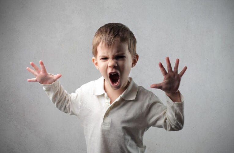Детская агрессия. Причины. Как бороться?