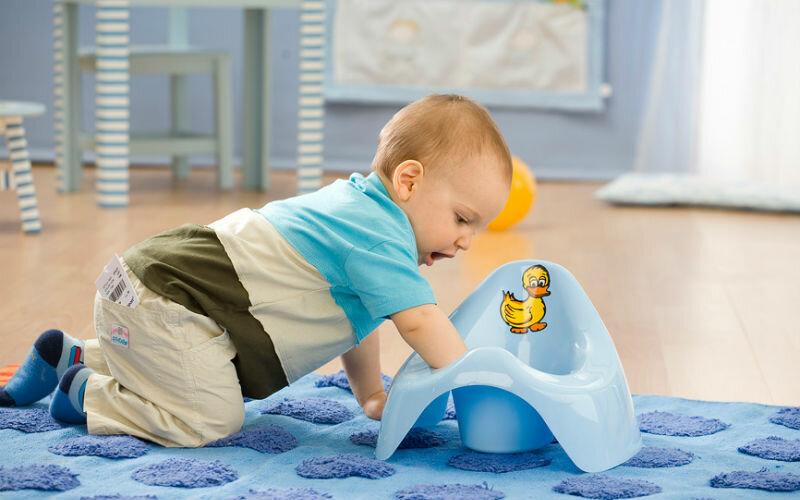 Процесс приучения малыша к горшку