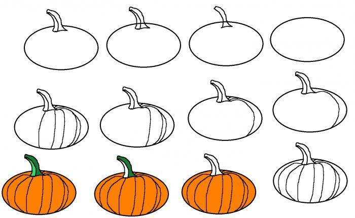 Рисование овощей поэтапно (тыква)